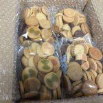 夏の豆乳おからクッキー/B.LABO 蒲屋忠兵衛商店